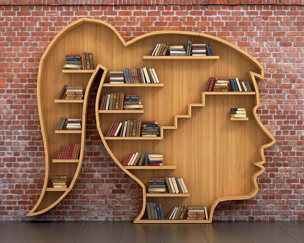 Qué estudiar después de Psicología